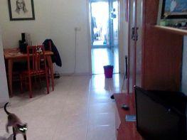 Piso en venta en calle Mercado, Palamós - 162528445