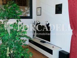 Piso en alquiler en calle Torrent del Remei, El Coll en Barcelona