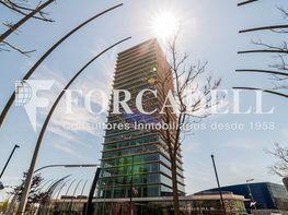 _dsc5748 - Oficina en alquiler en calle Europa Torre Realia, El Gornal en Hospitalet de Llobregat, L´ - 263439390