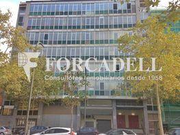 Img_0989 - Nave industrial en alquiler en calle Marina, Bellvitge en Hospitalet de Llobregat, L´ - 337428794