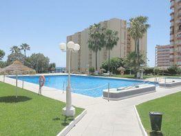 Appartamentino en vendita en Puerto Marina en Benalmádena - 304939136
