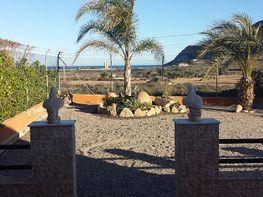 Jardín - Casa rural en alquiler de temporada en calle Cabo Cope, Águilas - 126750848
