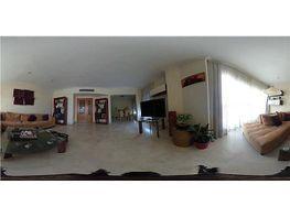 Piso en alquiler en Nervión en Sevilla - 387649664