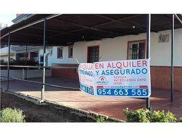 Local comercial en alquiler en Sevilla - 351712002