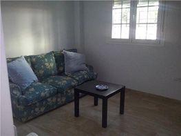Local comercial en alquiler en Chiclana de la Frontera - 311446868