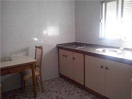 Casa en alquiler en Chiclana de la Frontera - 405047544