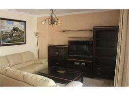 Casa en alquiler en Norte en Jerez de la Frontera - 415381522