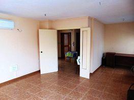 Foto - Piso en alquiler en calle Camino de Malaga, Camino viejo de Malaga en Vélez-Málaga - 244933793