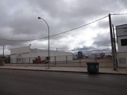 Nau industrial en lloguer calle Industrial D, Manzanares - 358465532
