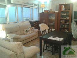 Foto1 - Piso en alquiler en Sanlúcar de Barrameda - 339357398