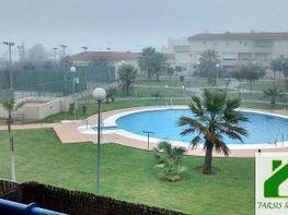Foto1 - Piso en alquiler en Sanlúcar de Barrameda - 339368324