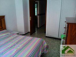 Foto1 - Piso en alquiler en Sanlúcar de Barrameda - 339377708