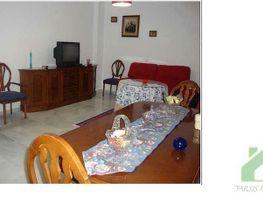 Foto1 - Piso en alquiler en Sanlúcar de Barrameda - 416007397