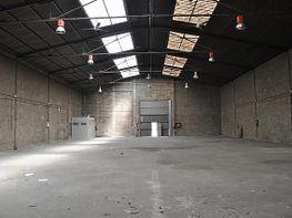 Planta baja - Nave industrial en alquiler en calle Palau de Plegamans, Palau-solità i Plegamans - 159368458
