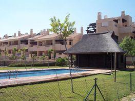 Patio - Piso en venta en calle Hacienda del Álamo, Fuente-Álamo - 429566663