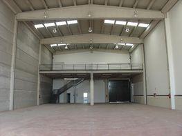 Nave industrial en alquiler en calle San Erasmo, San Cristóbal en Madrid - 355060358