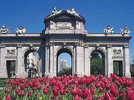 Foto - Oficina en alquiler en calle Castellana, Castellana en Madrid - 312595050