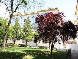 Piso en venta en calle Sur, Sur en Jerez de la Frontera
