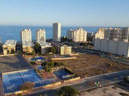 Flat for sale in calle La Figuera, Playa Mucha Vista in Campello (el) - 313254258