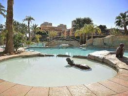 Flat for sale in calle Hacienda Administrador, Playa Mucha Vista in Campello (el) - 313255862
