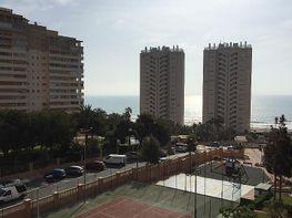 Flat for sale in calle Hacienda Administrador, Playa Mucha Vista in Campello (el) - 313267552