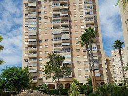 Flat for sale in calle De la Figuera, Playa Mucha Vista in Campello (el) - 313268957