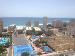 Flat for sale in calle De la Figuera, Playa Mucha Vista in Campello (el) - 313868666