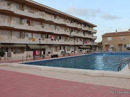 Piscina - Apartamento en venta en calle Urà, Tarraco en Cambrils - 149574081