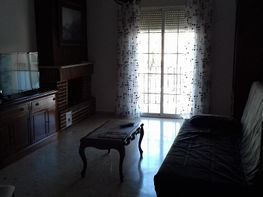 Foto - Piso en alquiler en calle Centro, Puerto Real - 408670512