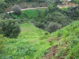 Terreny en venda calle Eucaliptos, Divina Pastora a Marbella - 175023749