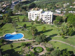 Apartamento en alquiler en Nueva Andalucía en Marbella