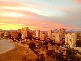 Foto - Apartamento en venta en Albufereta en Alicante/Alacant - 238197822