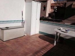 Foto1 - Apartamento en alquiler en Chiclana de la Frontera - 388048351