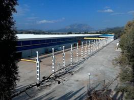 Nave industrial en venta en calle Circumvalacio, Urb. Ca n´Amat en Abrera - 361126982