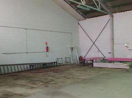 Gewerbehalle in verkauf in Jerez de la Frontera - 208420693