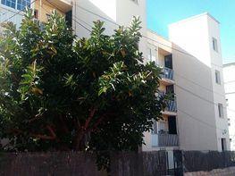 Petit appartement de vente à Puerto de Santa María (El) - 229055199