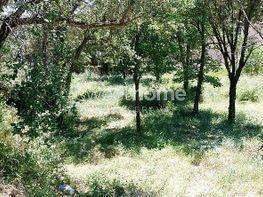Terrain de vente à Calonge - 279416933