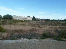Ciutat jardí - Terreno en venta en calle Castanyer, Lleida - 278128026