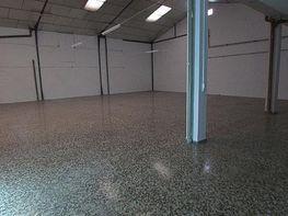 Foto - Local comercial en alquiler en Albacete - 225361113