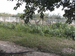 Grundstück in verkauf in calle Samperer, Mutxamel/Muchamiel - 186896847