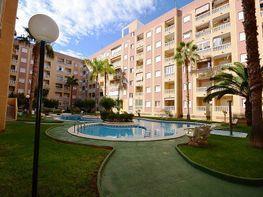 Apartament en venda calle Centro, Centro a Torrevieja - 415482853