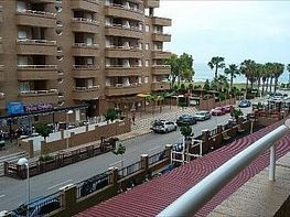Apartment in miete in Marina d´Or in Oropesa del Mar/Orpesa - 408306911