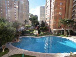 Foto - Piso en venta en calle Levante, Levante en Benidorm - 391416894