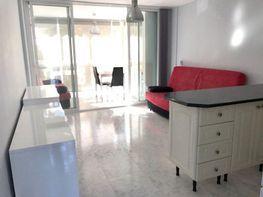 Foto - Estudio en venta en calle Rincon de Loix, Rincon de Loix en Benidorm - 400271817