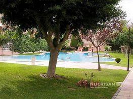 Piscina con jardín - Villa en alquiler en Playa de San Juan en Alicante/Alacant - 400174890
