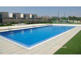 Piscina con jardín - Villa en alquiler en San Vicente del Raspeig/Sant Vicent del Raspeig - 412582791