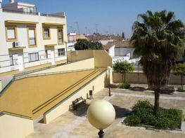 Wohnung in verkauf in calle Castilleja de la Cuesta, Castilleja de la Cuesta - 295814272