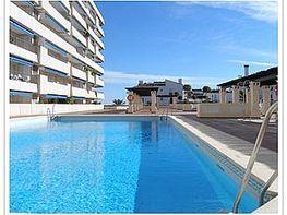 Apartamento en alquiler de temporada en plaza Marina Banús, Nueva Andalucía-Centro en Marbella - 202151581