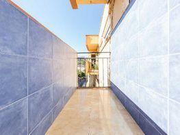 pisos alquiler nou barris baratos