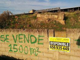 Foto 1 - Finca rústica en venta en polígono Ganadero, Cáceres - 295029667